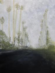 landscape159